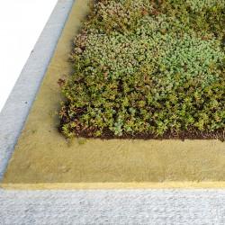 Lichtgewicht groen dak (per...