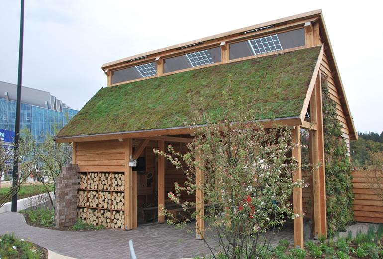 Groen dak waterberging warmteregulering geluidsisolatie luchtzuivering biodiversiteit